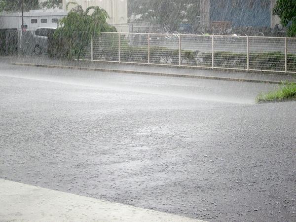 b-rain2